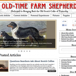 OTFS web design