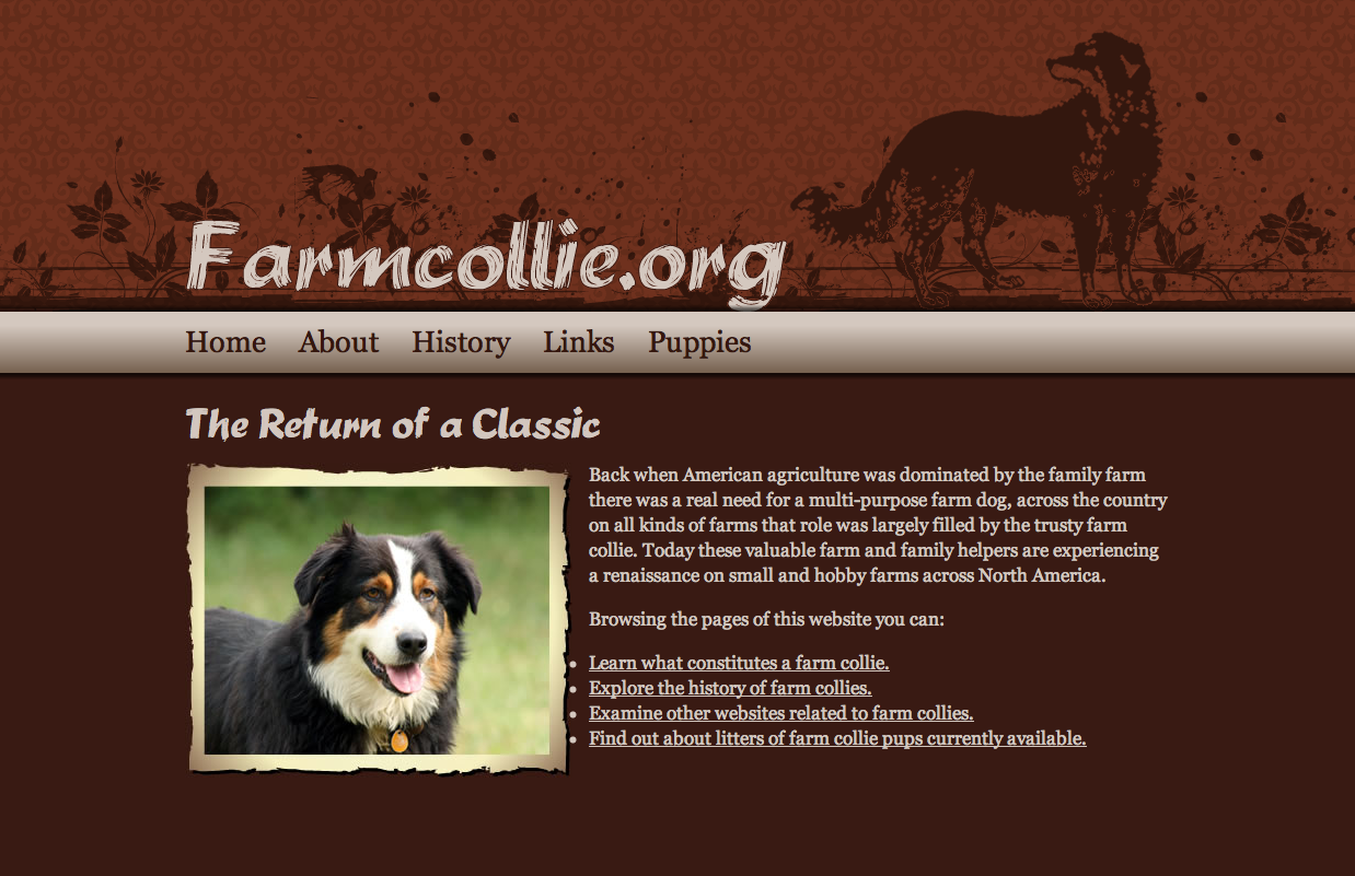 Farm Collie Web Design
