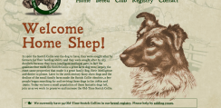 scotch collie web design