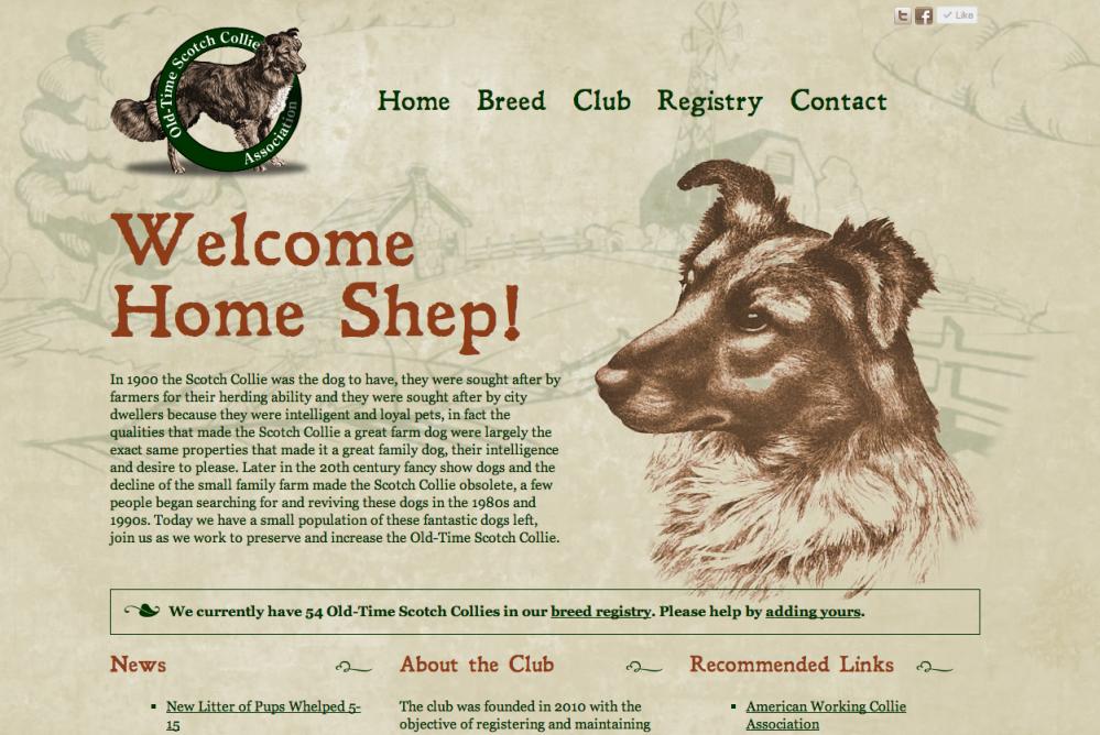 scotch collie web design