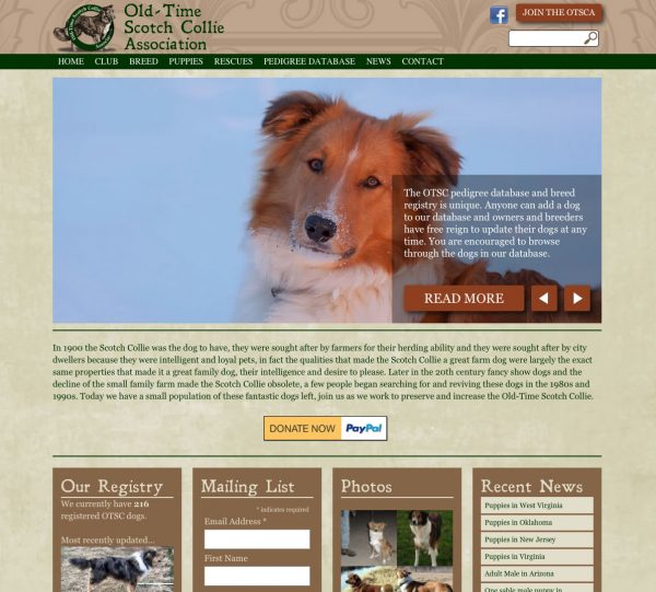 web design for old time scotch collie association